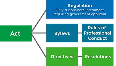 What are the Bylaws and Rules?
